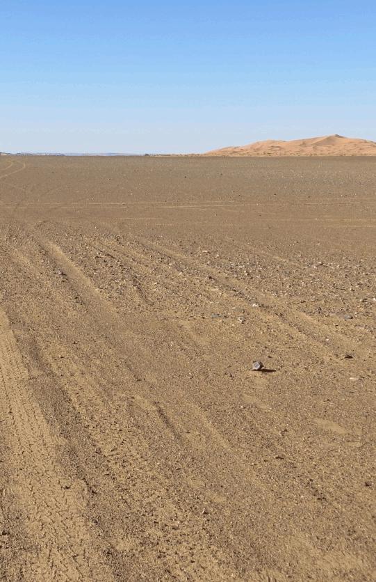 Tracks through the Sahara. (Photo: yellow magpie)