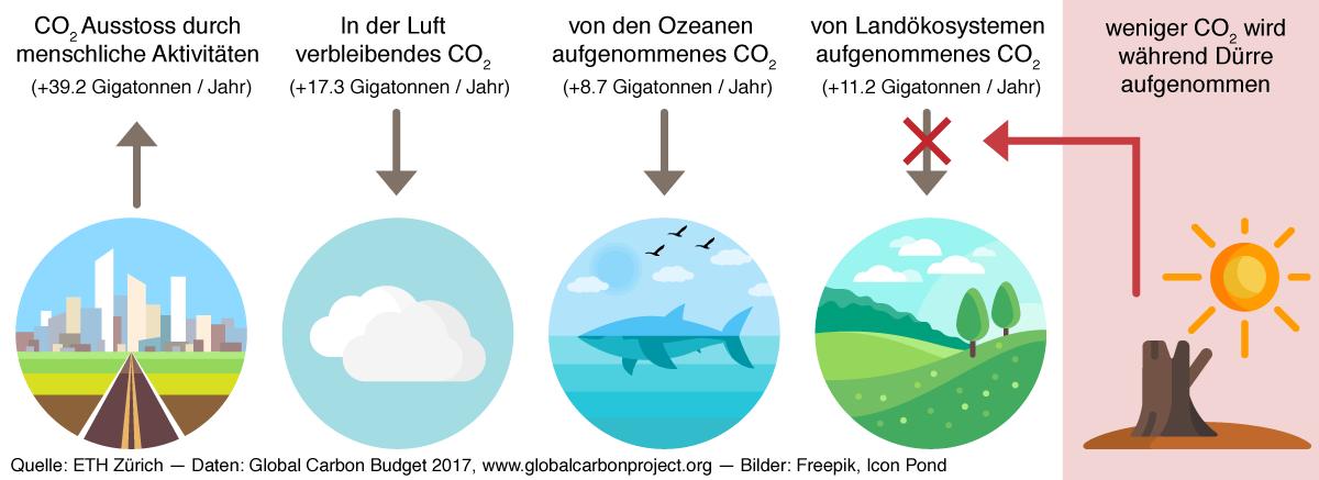 Infografik Duerre CO2