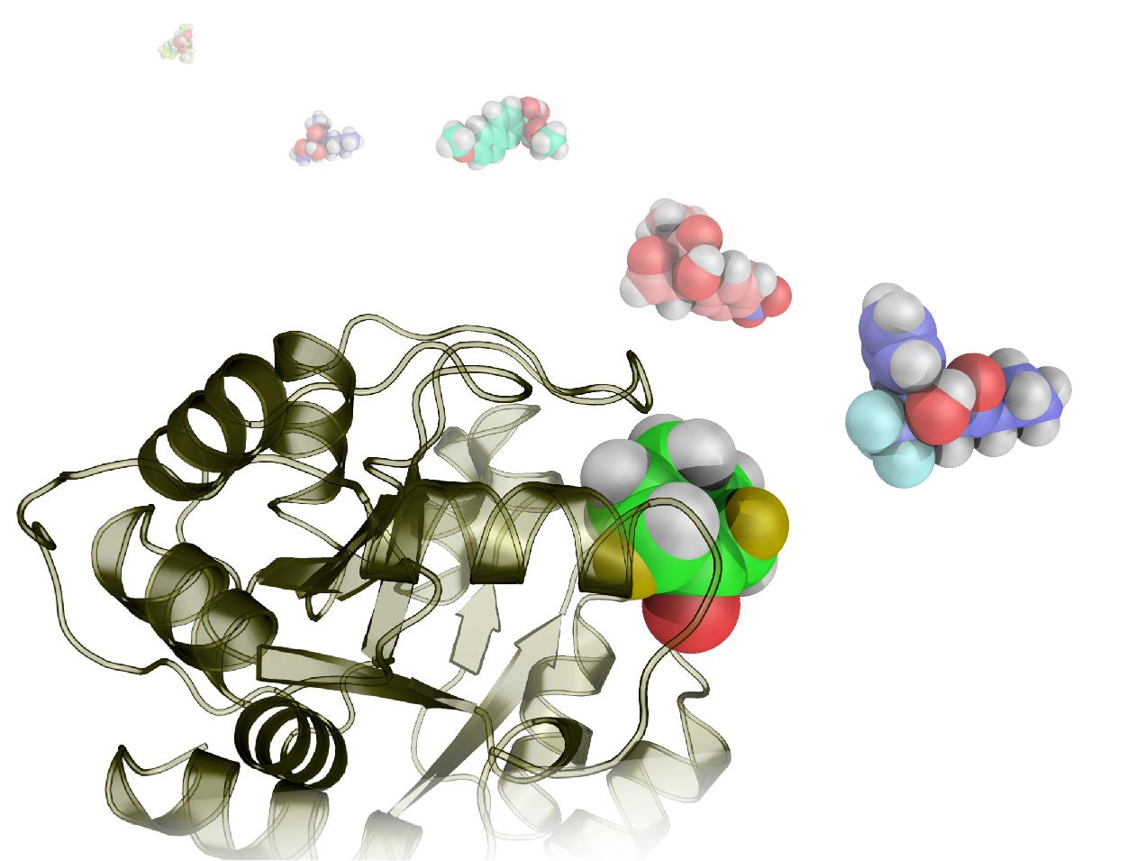 Dank k nstlicher enzyme neue wirkstoffe entdecken eth z rich for Zimmermannsverbindungen herstellen