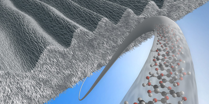 Cartoon depicting a surface-structured sheath composed of bacterial cellulose nanofibers