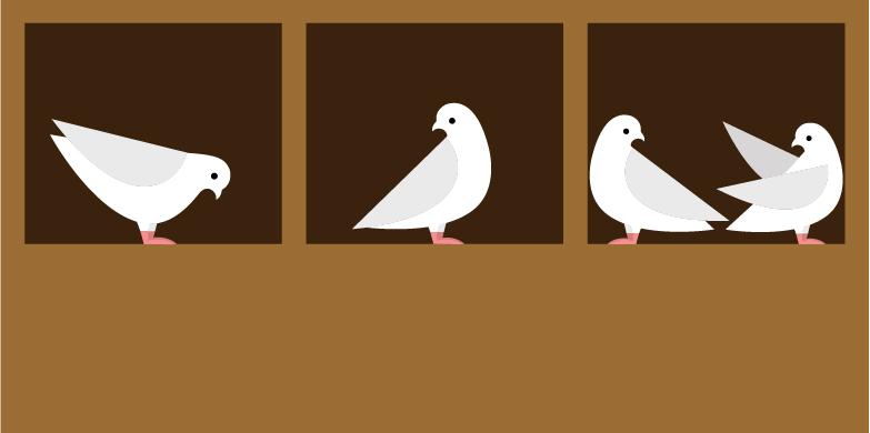 نتیجه تصویری برای Pigeonhole principle