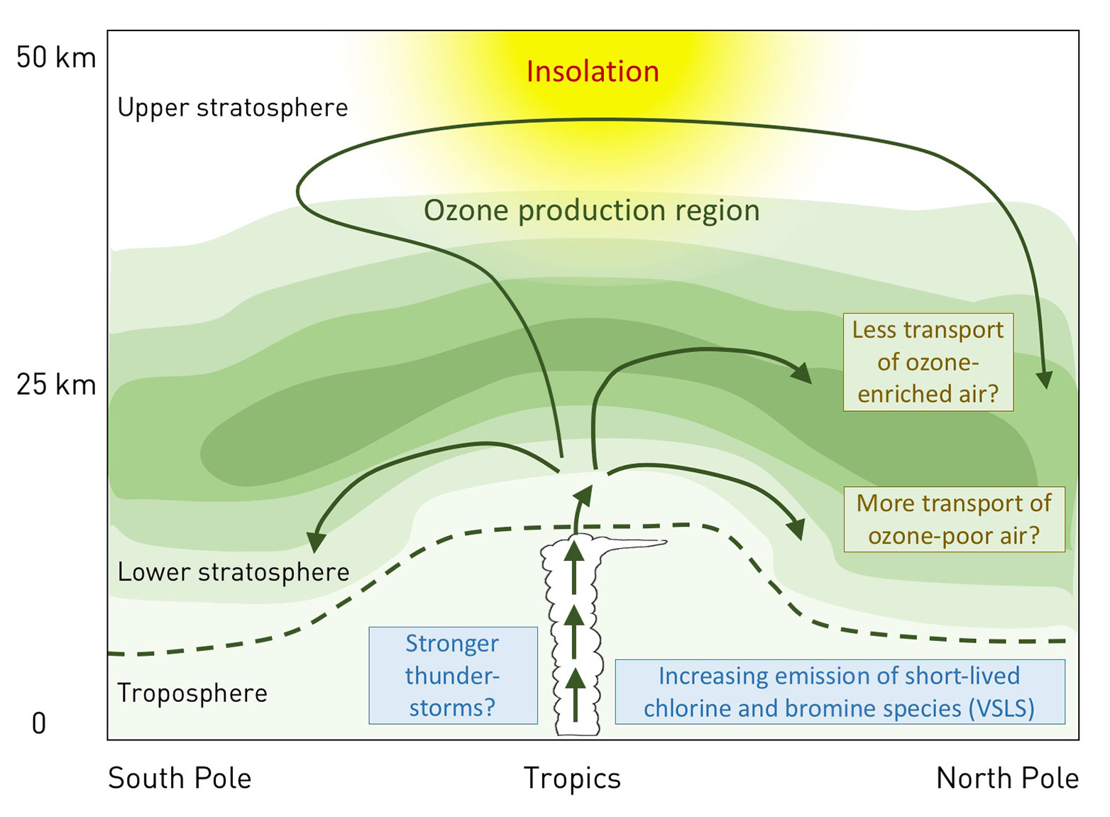 ozone is created when oxygen is split by sunlight, mainly at altitudes of  30 km and above in the tropics, and it is then distributed around the globe  by