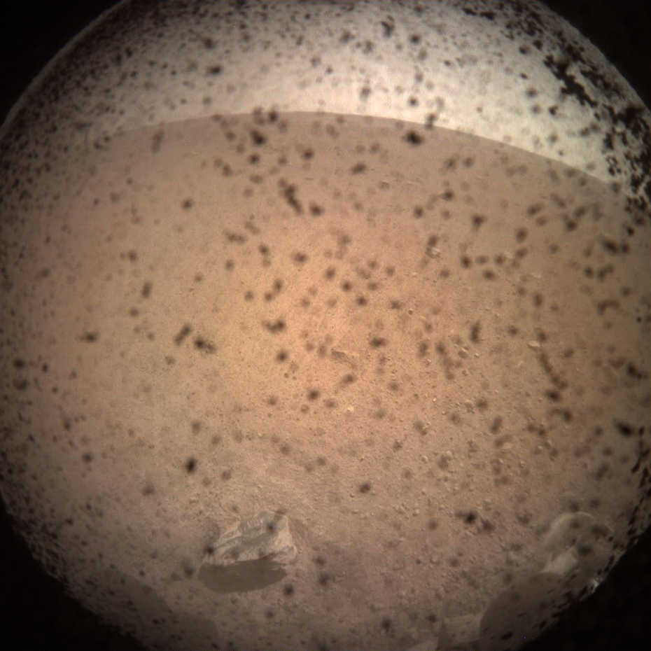First image taken by InSight