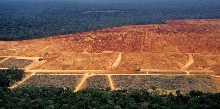Deforestation in the Amazon is increasing again