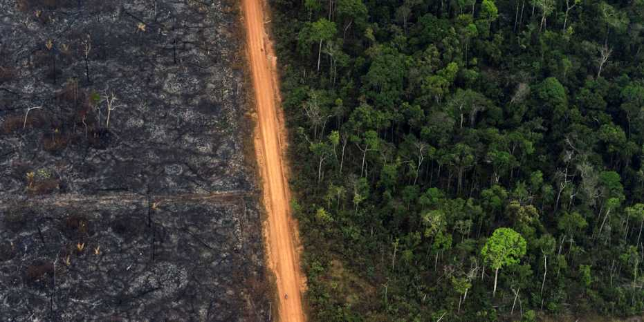 Deforestation in the South American rainforest extends along roads - as here in the Brazilian Amazon region. (AP Photo/Victor R. Caivano)